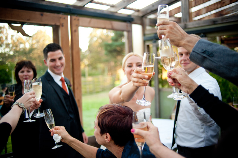 Bride and Groom exchange toasts with wedding guests