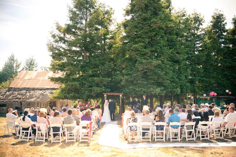 Wedding guest under redwoods