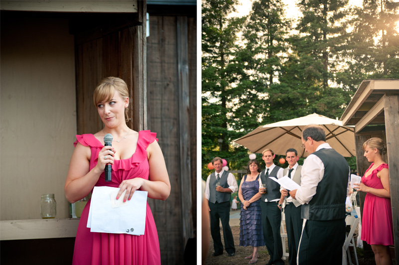 Guests giving toasts at wedding
