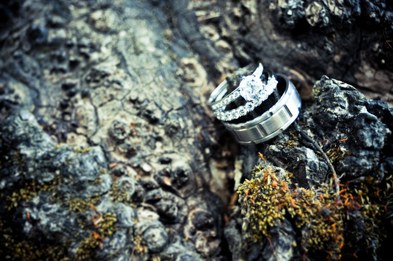 Wedding rings on tree stump