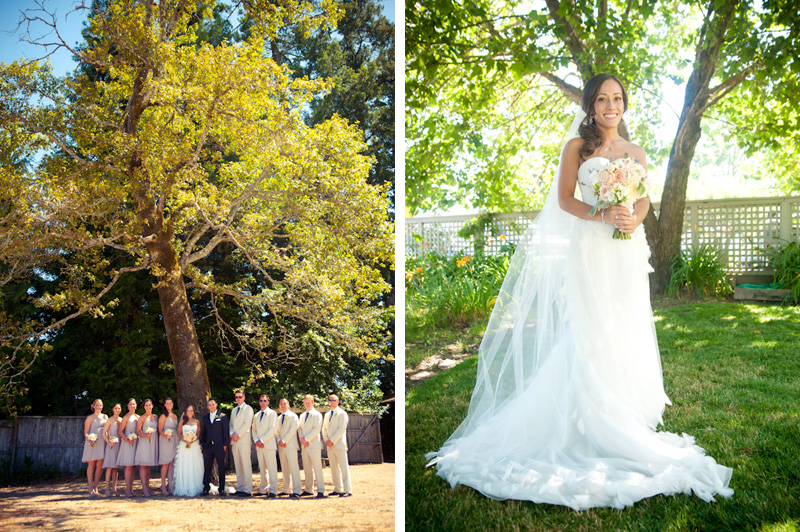 Wedding party beneath oak tree
