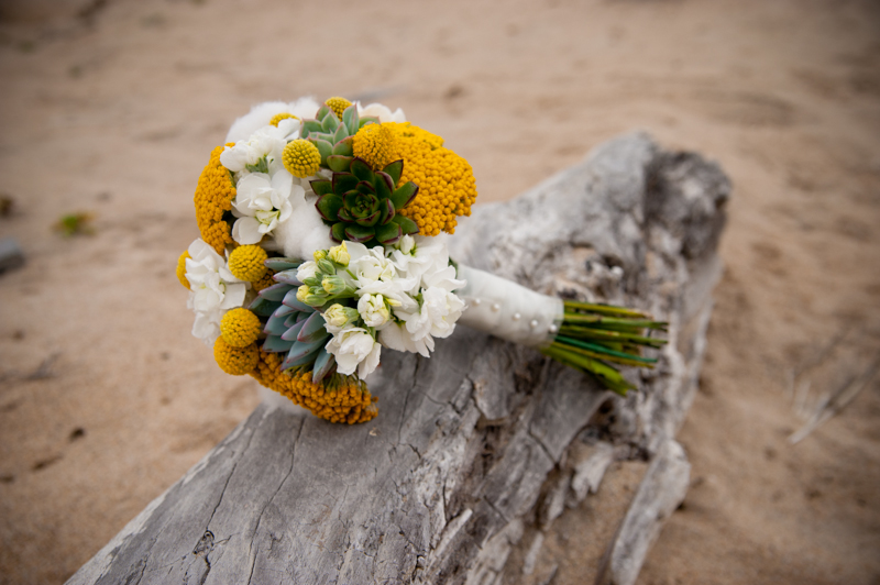 Wedding bouquet resting on driftwood in Monterey, CA
