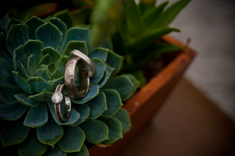 Detail of wedding rings on succulent plant