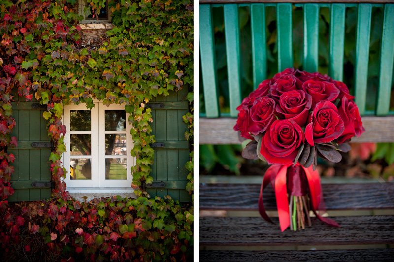 Red rose bouquet with vine covered window at Viansa Winery in Sonoma