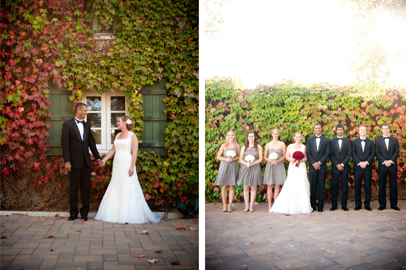 Bride and Groom with Wedding Party at Viansa Winery in Sonoma, CA