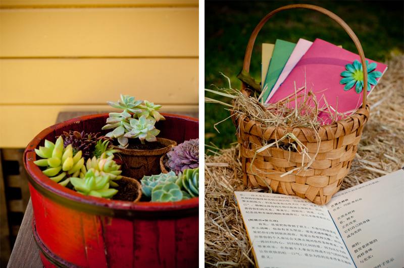 Detail of DIY wedding programs and planter box