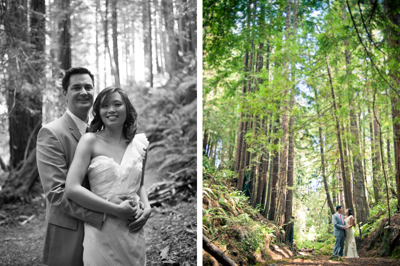 Wide angle photo of Bride and Groom in Mendocino redwood grove