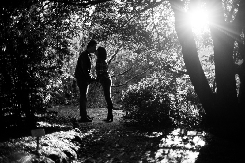 Silhouette of couple during anniversary photo session