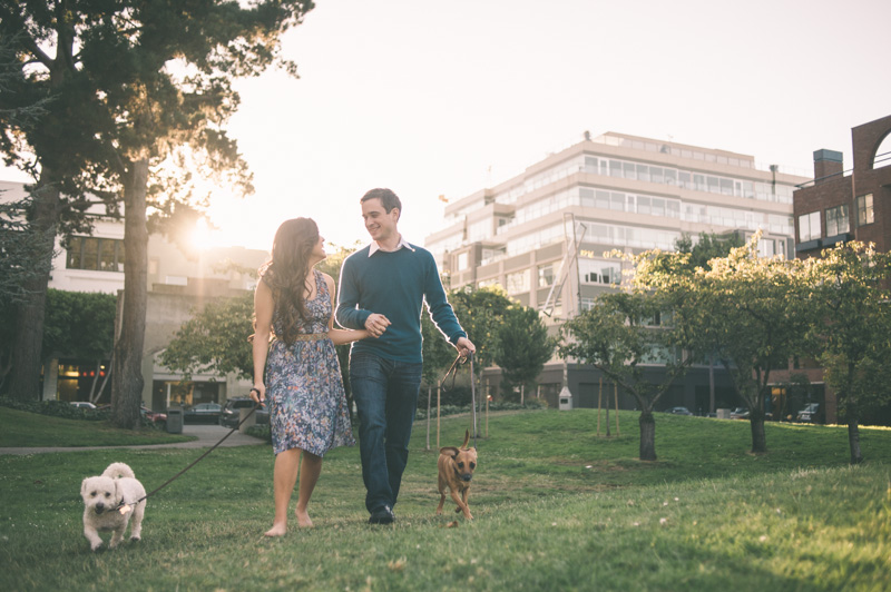 Couple walking dogs at sunset in San Francisco park