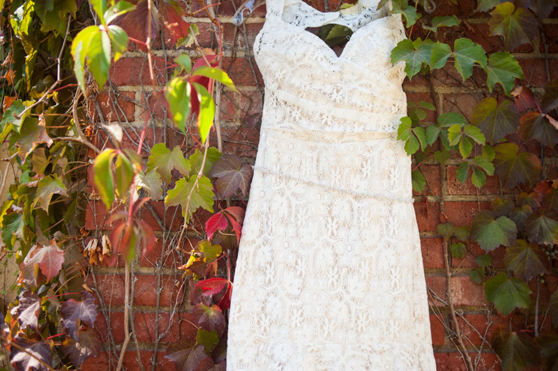 Detail of lace wedding dress on vine