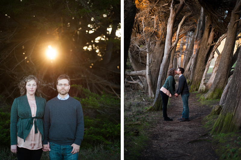 Portrait of Bride and Groom in cypress grove in Sea Ranch, CA