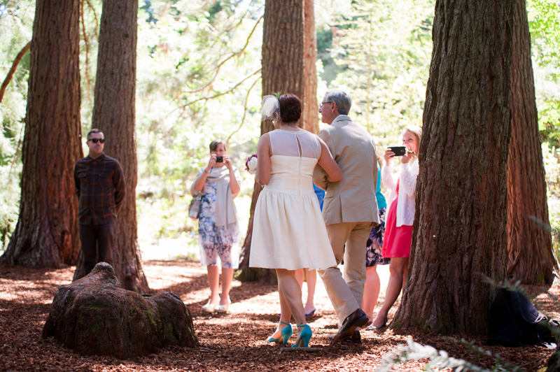 Bride walking down aisle under redwood grove in Tilden Park