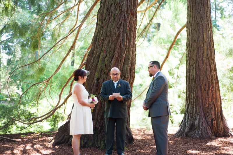 Wedding in Tilden Park