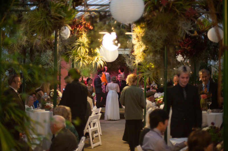Wedding reception inside greenhouse