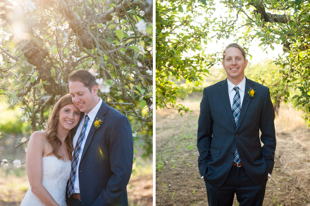 Bride and groom in an apple orchard in Sebastopol