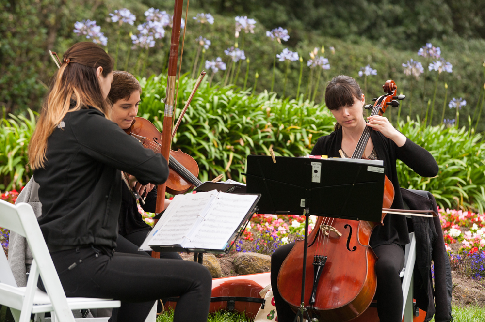 Musicians performing for outdoor wedding ceremony in Golden Gate Park