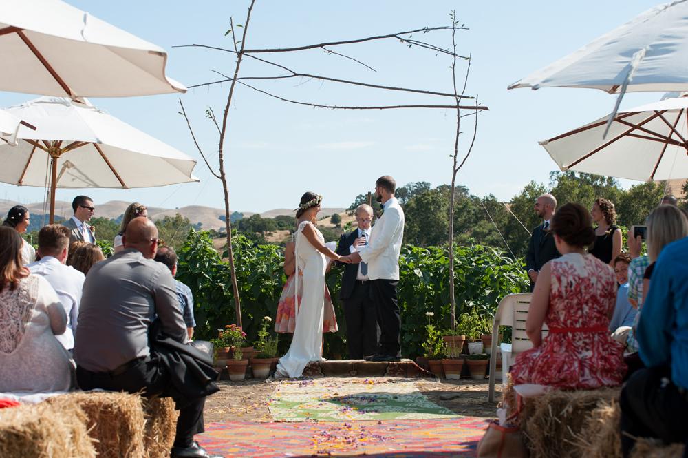 Wedding at Happy Acre Farms
