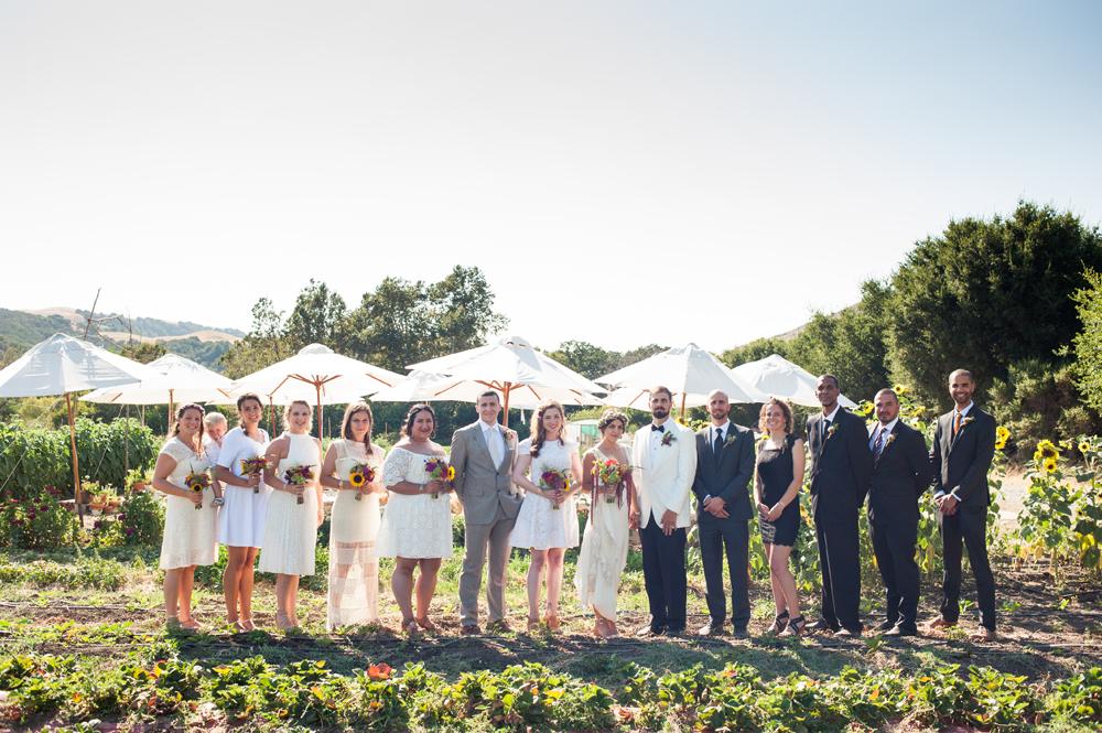 Photo of wedding party on farm in Sunol, CA