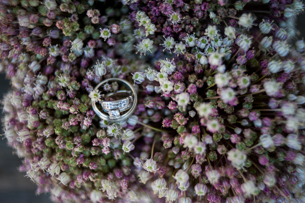 Wedding rings on tiny flowers