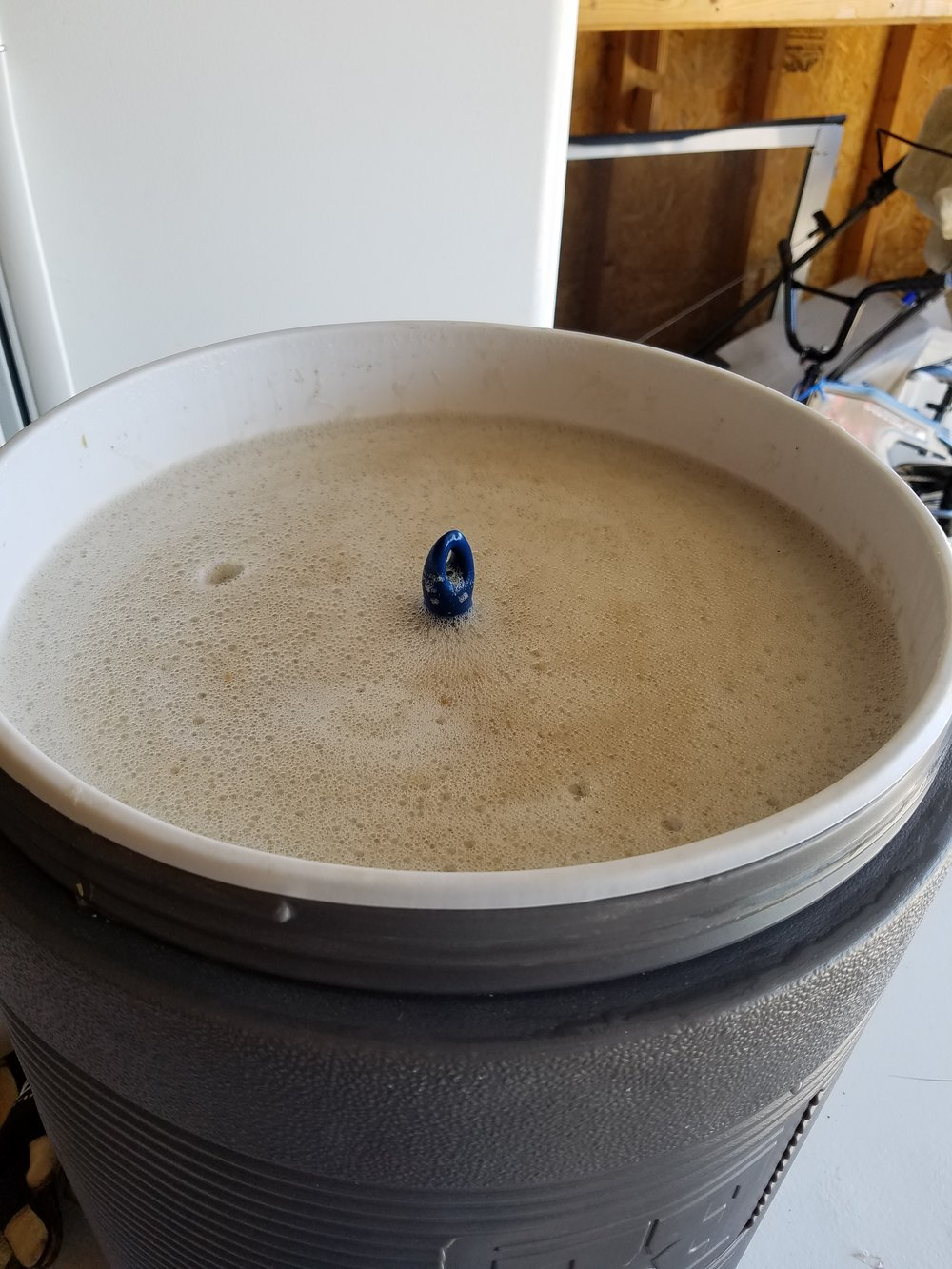 Home Brew Brown Sugar Belgian Ale Mash
