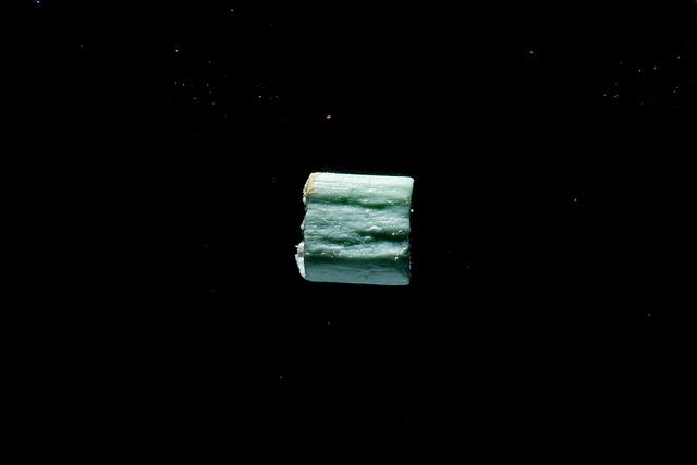 Microplastics from the Patapsco River