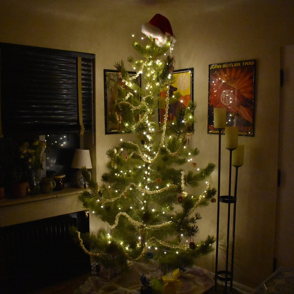 how to have a zero waste christmas tree note to trash