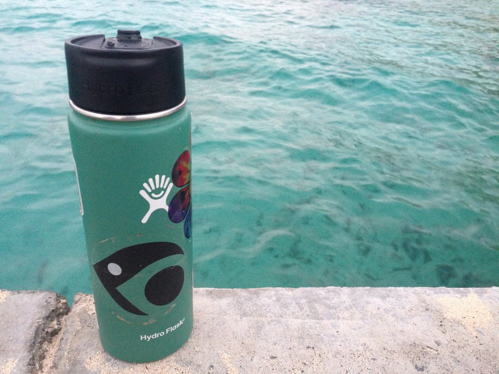 My dutiful Hydroflask kept my coffee warm all night in the field on Buck Island, monitoring mama sea turtles!