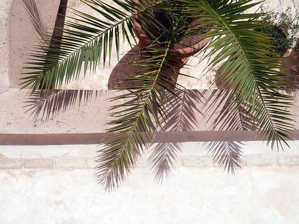 emily baker marrakech palms.jpg