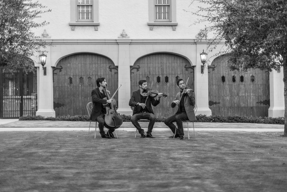 The Lubben Brothers Trio at the Flagler Museum, Palm Beach Island, 2016.