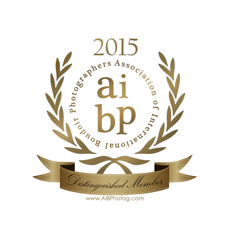 AIBP Distingquished Member Seal 2015.png