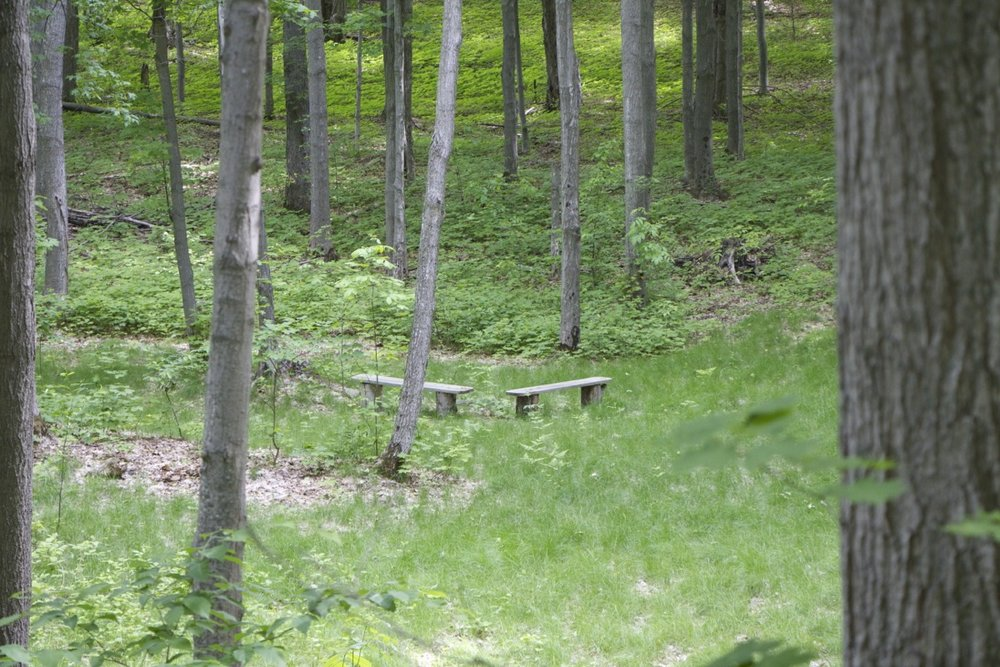 CampKellogg - 06.jpg