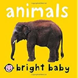 Bright Baby.jpg