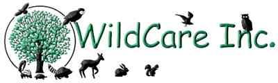 Wildcare Logo (3).jpg