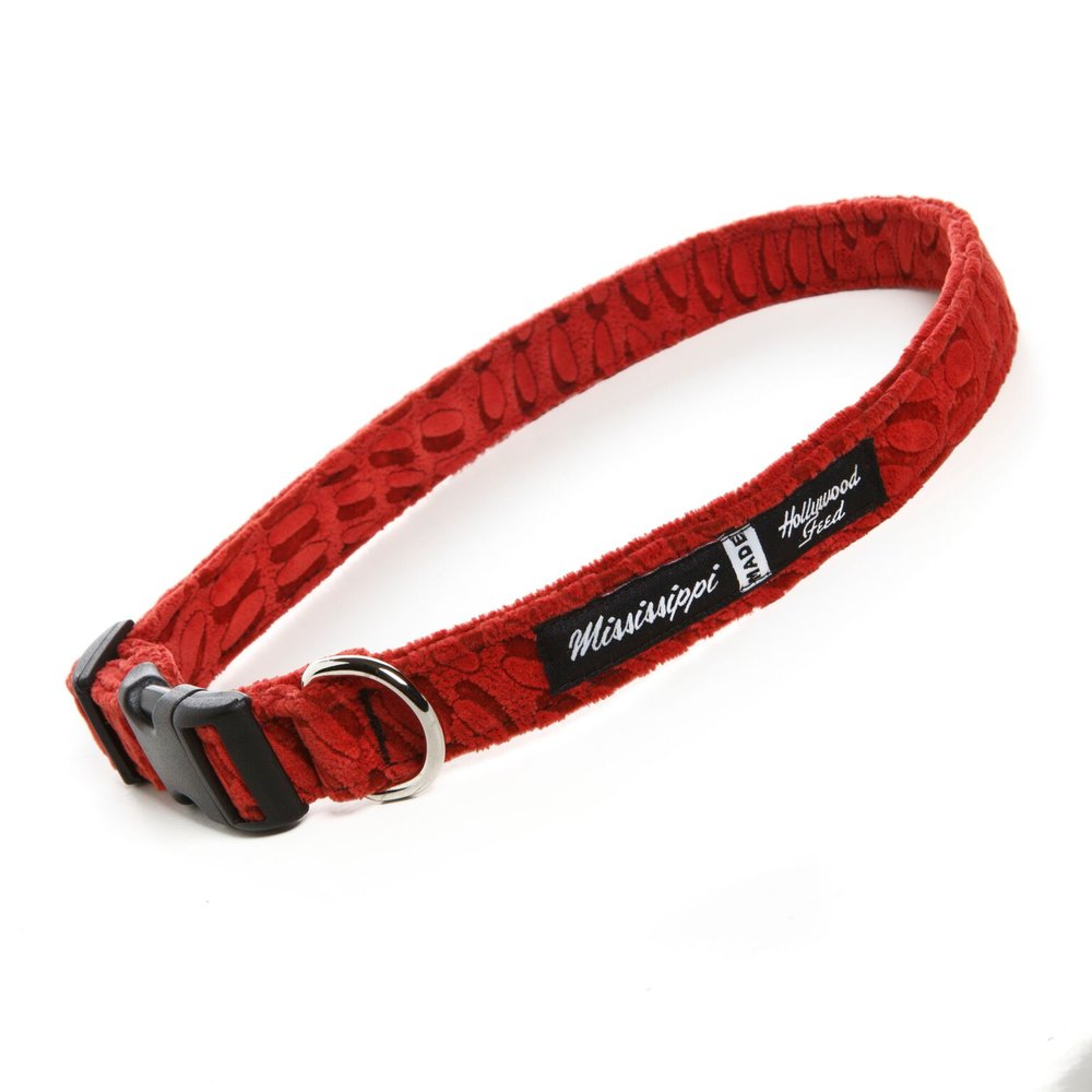 Dog collar branding and design