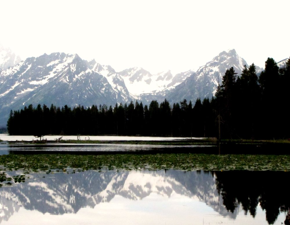 Reflections in the Lake, Grand Teton National Park, Wyoming