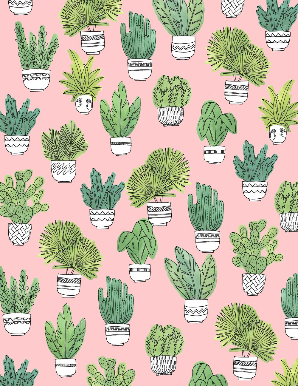 Cactus_WEB.jpg