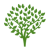 tree 4.png