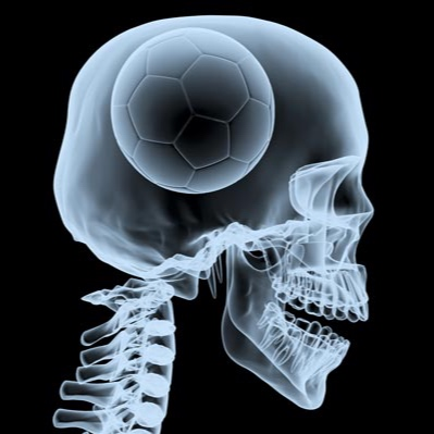 soccerbrain.jpg