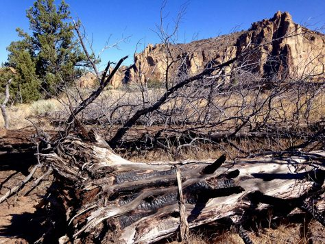 The Smith Rock fire started at the Bivy field