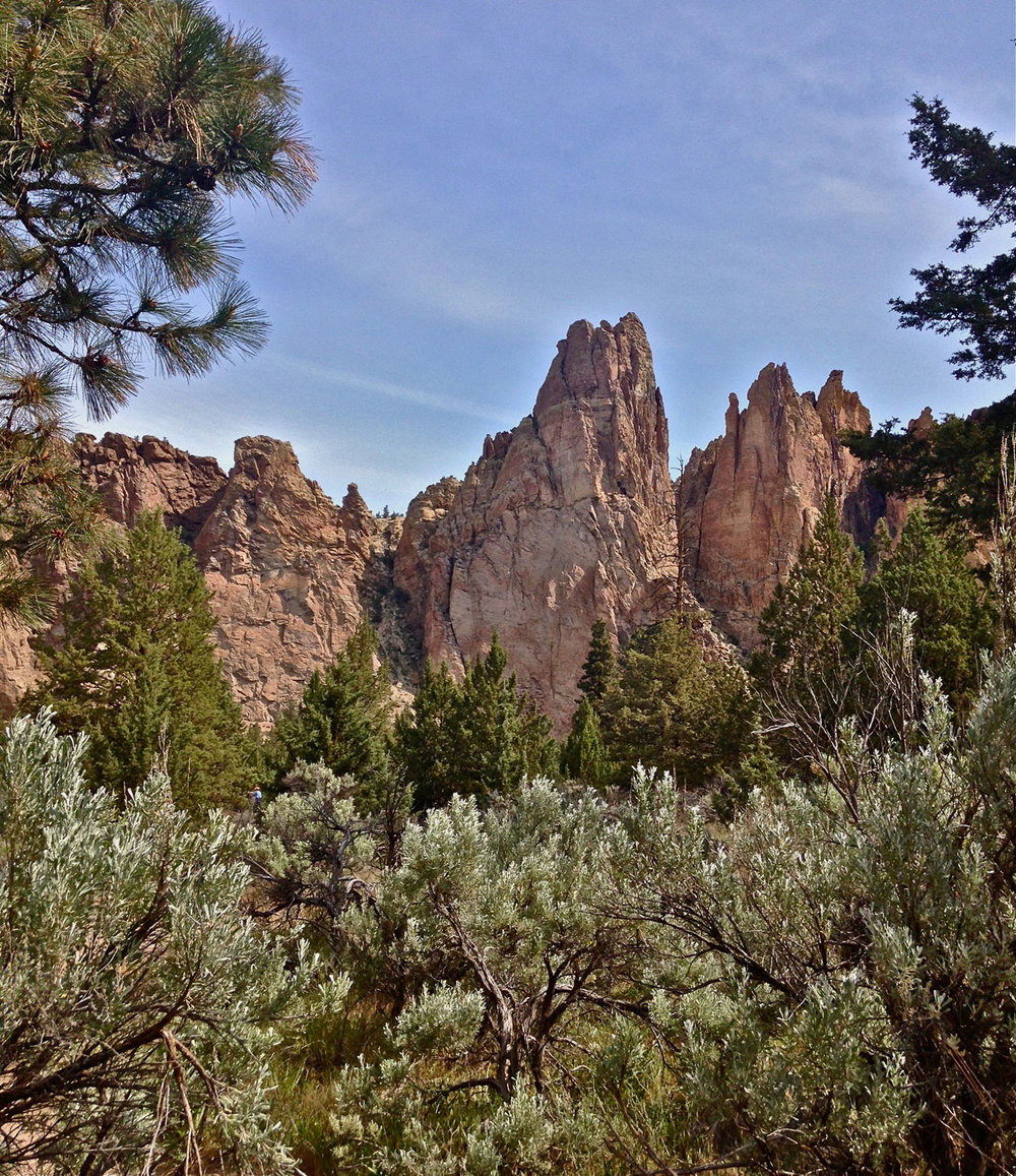 The Monument is the large pinnacle of the group in this area on the Homestead Trail past the horse ford at Smith Rock State Park.
