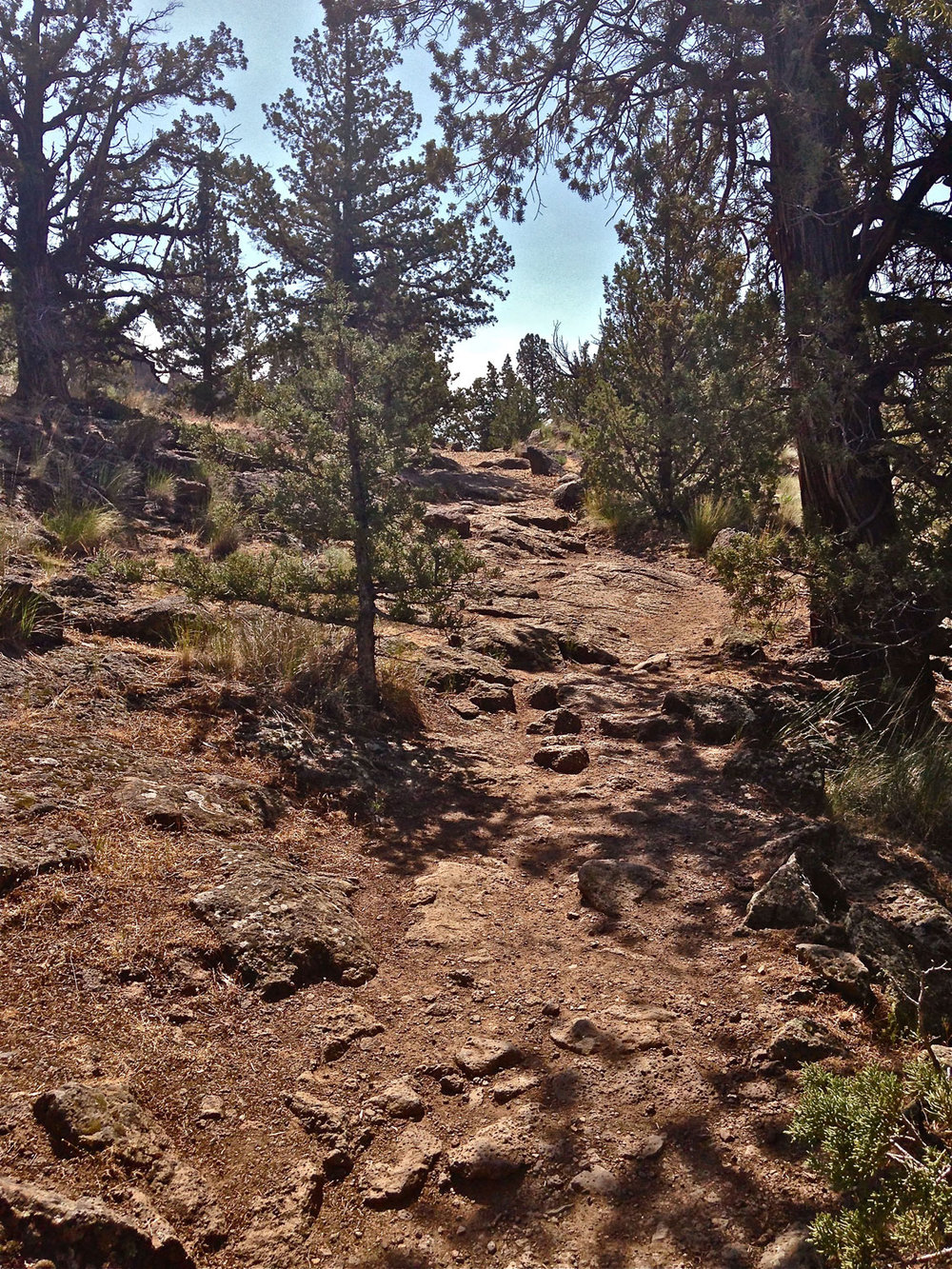 Rocky section of steep uphill of standard route up out of the canyon on Homestead Trail at Smith Rock State Park.