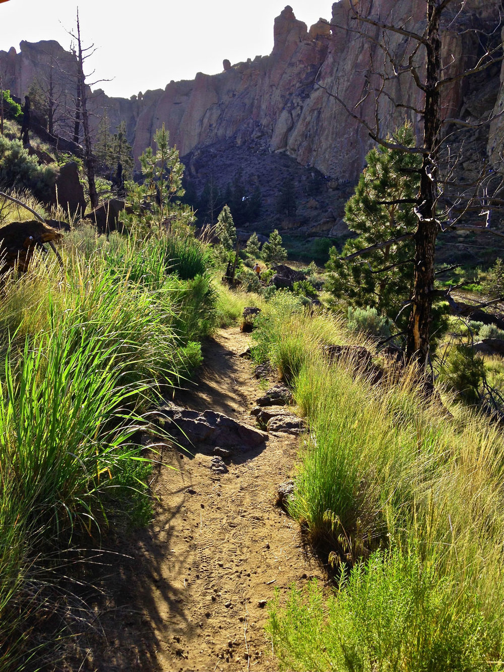 Canyon Trail as it turns upward away from the river canyon and winds up the hill out of Smith Rock State Park.