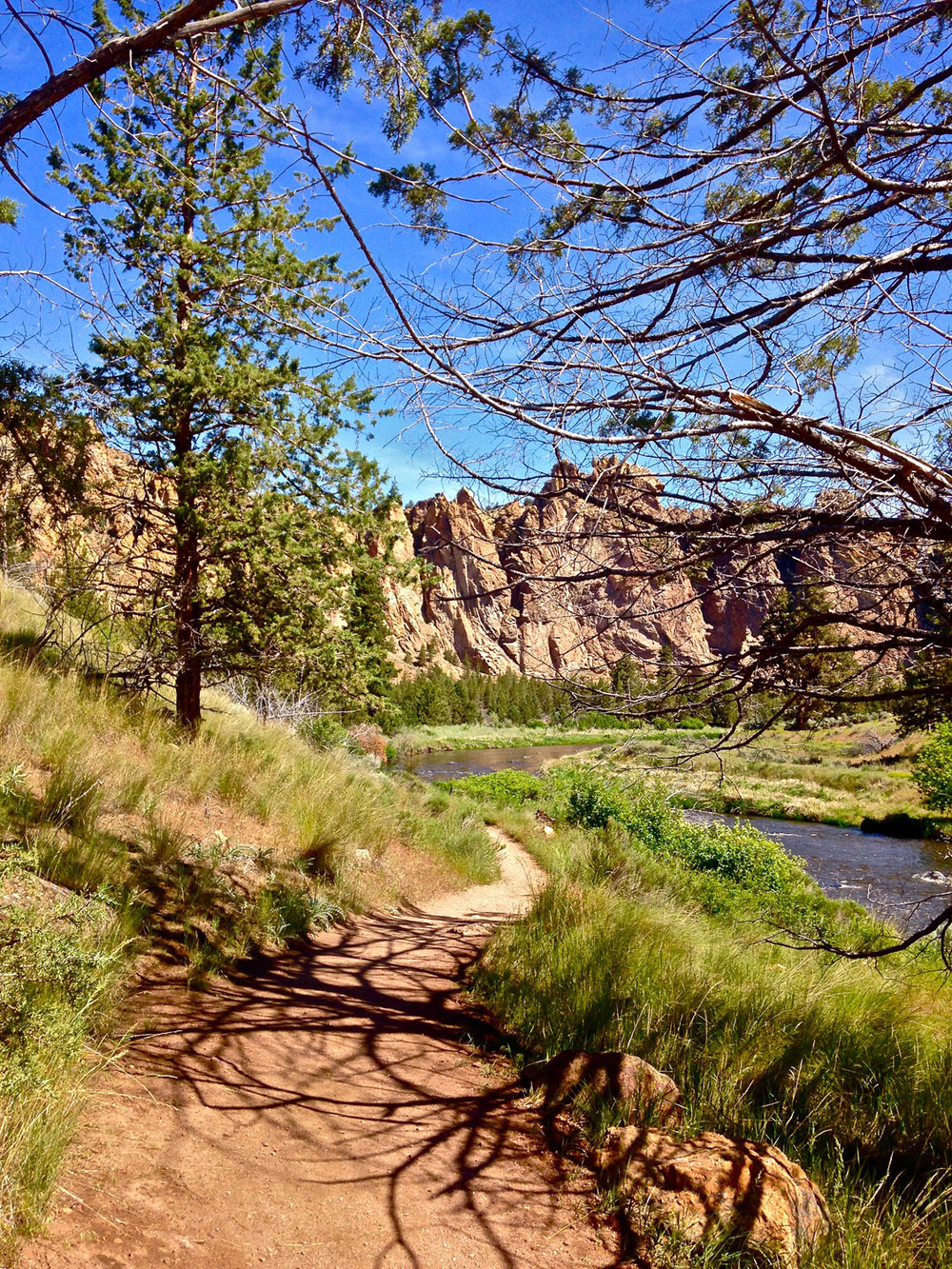 The Wolf Tree Trail follows the Crooked River at Smith Rock State Park toward the Monument area.