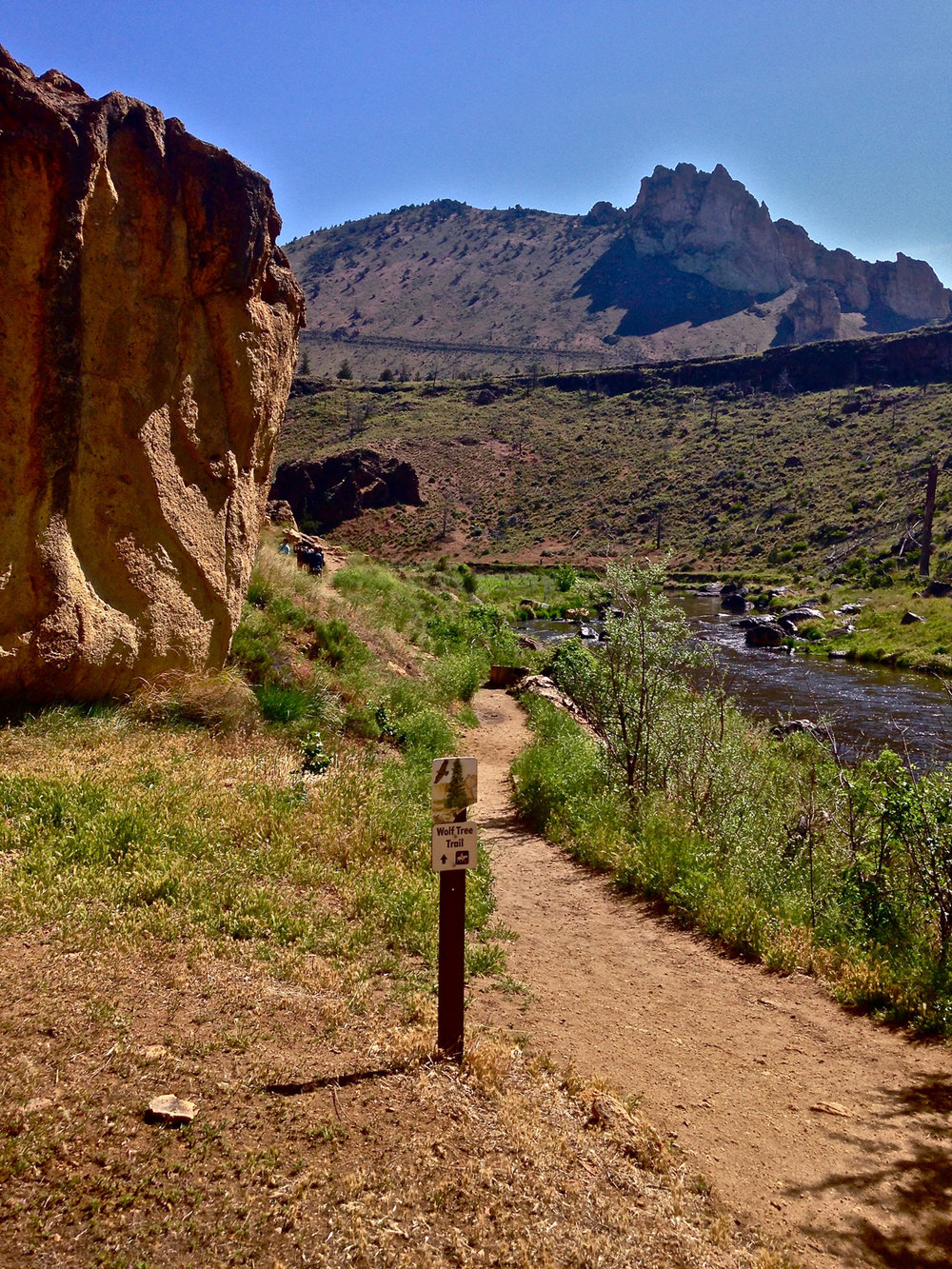 The Wolf Tree Trail at Smith Rock State Park is great for watching climbers as you go around the rock walls.