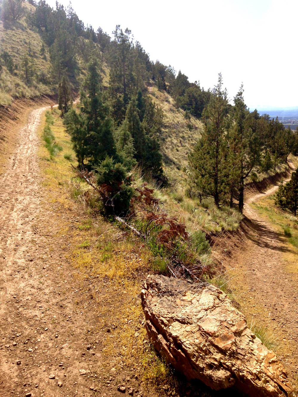 The famous switchbacks of the Summit Trail at Smith Rock State Park.