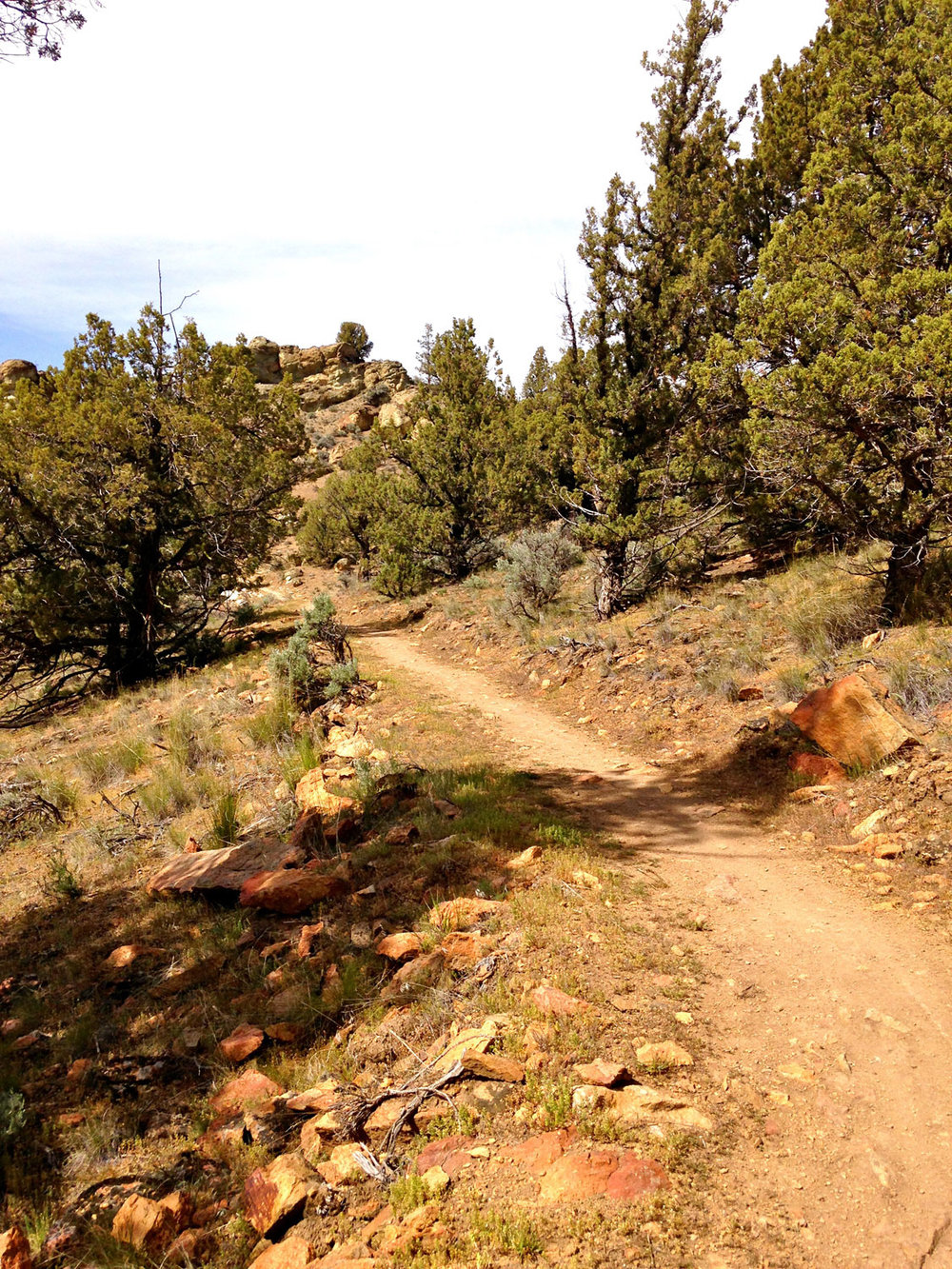 The Summit Trail gently gains elevation once back in Smith Rock State Park.