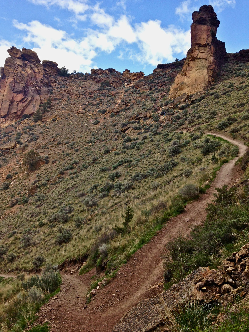 A Monkey Face look-alike is seen from the Misery Ridge Trail at Smith Rock State Park.