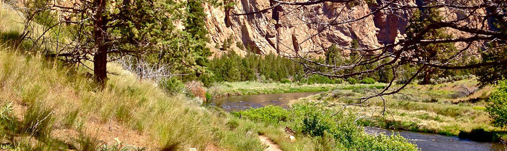 WOLF Tree to burma and Back (2.8 miles) - Head away from the crowds, maybe spot a great heron on a river rock and golden eagles that nest in the Monument area, then head up to the edge of park and BLM land for some views of the Gorge area.