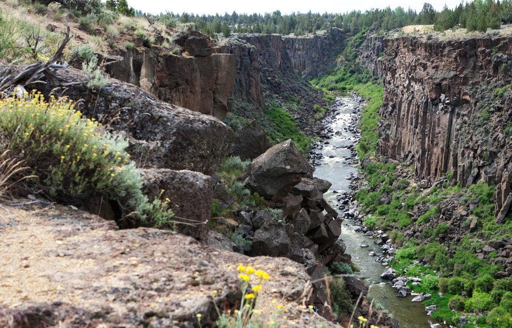 Gorge Area