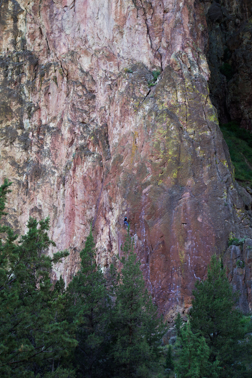climber on the Phoenix Block of the Smith Rock Group at Smith Rock State Park
